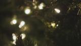 Christmas Lights Still Image 03