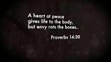 Contentment Scriptures