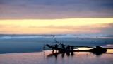 Surf Log at Sunset - HD & SD