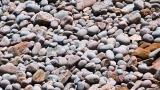 Living Stones, Beach Cobbles