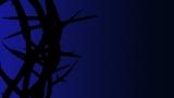Thorns - Blue - SD & HD still