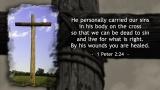 Cross & 1 Peter 2:24 - SD & HD still