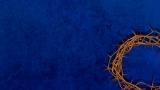 Blue Thorns Background