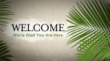 Palm Sunday - Welcome Still