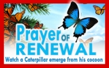 You Can Be Renewed!