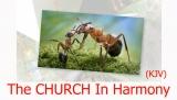 Church Harmony (KJV)
