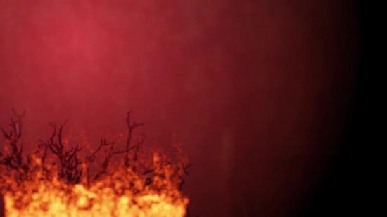 burning bush background loop