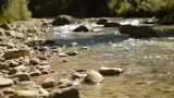 Mountain River: Nature Background