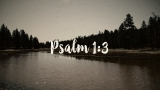 Psalm 1:3 - Rooted