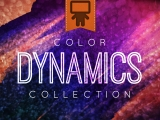 Color Dynamics Collection