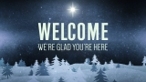 Christmas Forest Blue Welcome Still