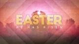 Spring Morning Easter Still