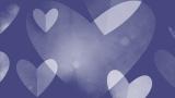 Heartfelt Love Still 3