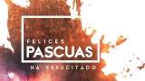 Holy Week Hues Still 3 Spanish