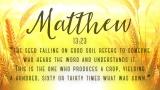 Harvest Sowing Matthew Still