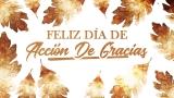 Thanksgiving Crisp Leaves Thanks Still - Spanish