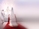 Bride by Danny Hahlbohm