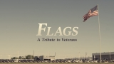 Flags - A Veterans Day Tribute