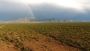 The Desert - Worship Background