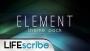 Element Theme Pack
