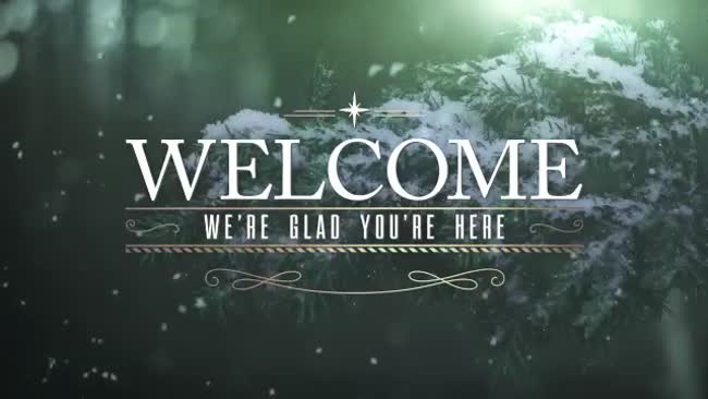 winter woods welcome