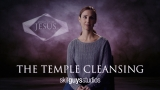 The Temple Cleansing