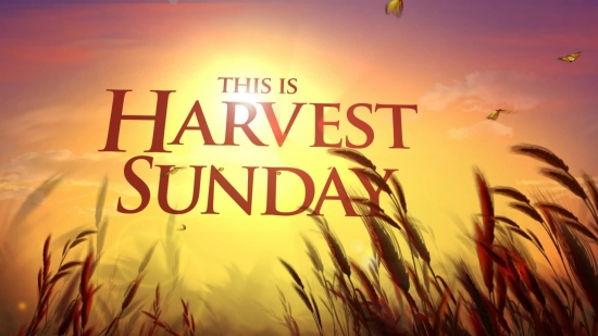 this is harvest sunday