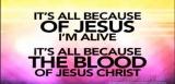All Because of Jesus FLEXX