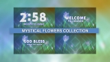 Mystical Flowers Collection