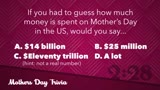 Mother's Day Interactive Countdown