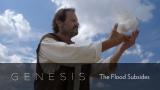 Genesis: The Flood Subsides