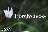 Forgiveness Countdown 2