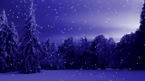 Christmas Winter Background 1