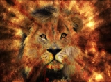 Lord, Lion and Lamb Background