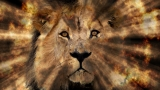 Lion of Judah Background