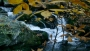 Autumn Flowing Streams