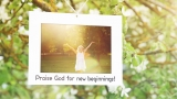 Spring Has Sprung! Worship Intro