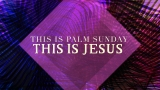 This Is Palm Sunday