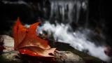 Autumn Waterfall Loop - SD & HD