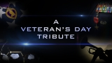 A Veterans Day Tribute