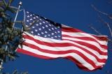 Still Patriotic Flag Collection