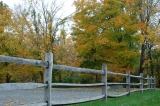 Fence And Colorful Trees