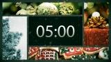 Beautiful Christmas Countdown