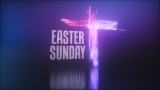 Easter collection looping motion and stills