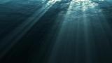 Ocean Loop