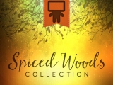 Spiced Woods Collection