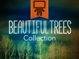 Beautiful Trees Collection - Spanish