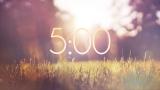Sunlit Grass Countdown