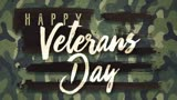 American Flair Veterans Day Motion