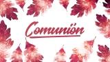 Thanksgiving Crisp Leaves Communion Still - Spanish